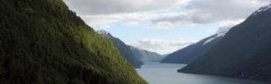 Circuit Norvège - Jour 7 : le Sognefjord